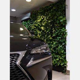 دیوار سبز نمایشگاه اتومبیل
