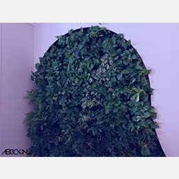اجرای دیوار سبز با طراحی خاص و متفاوت