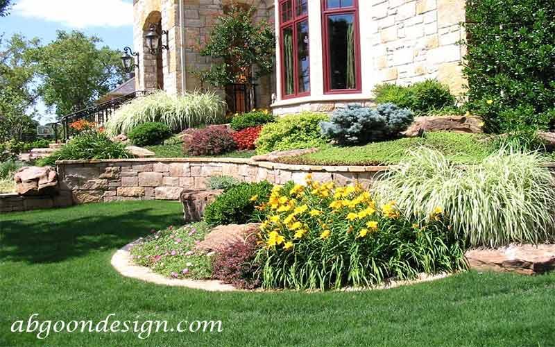 گیاهان مناسب محوطه سازی|آبگون دیزاین